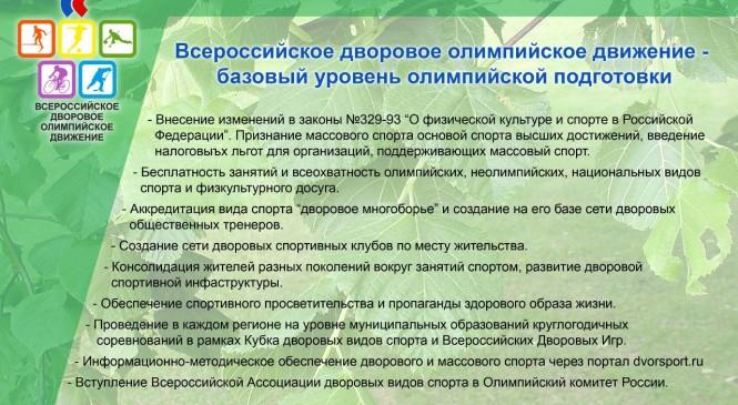 Национальный рейтинг развития дворового спорта в регионах России будет опубликован 15 декабря